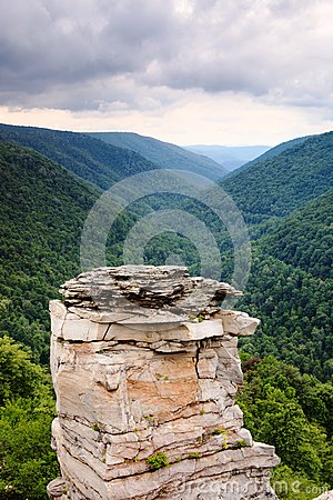 Free Lindy Point Blackwater Canyon Vertical West VA Stock Images - 32325924