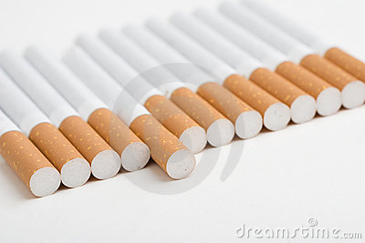 A line of cigarettes on white