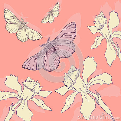 Line drawing butterflies and narcissus
