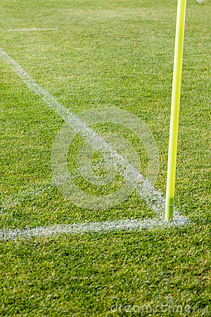 The line on the grass on the football pitch