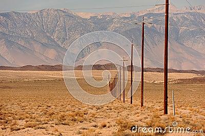 Line of telegraph poles across the desert