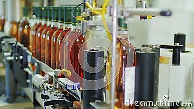 Linea automatizzata del trasportatore in serra di viti Disponga le etichette sulle bottiglie di vino Automazione industriale video d archivio