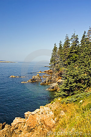 Linea costiera scenica della Maine