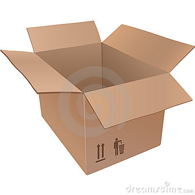 Lined cardboard boxes