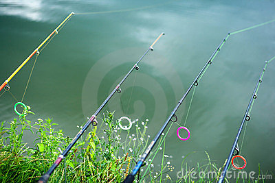 Lined up rods