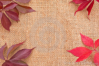 Linen background with leaves