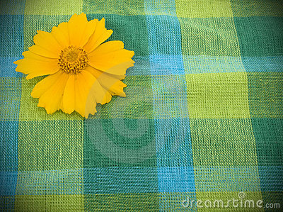 Linen fabric and yellow flower