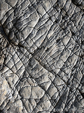 Lines on surface of rock
