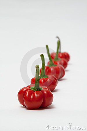 Lineup of red peppers