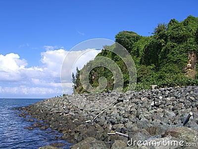 Linha costeira