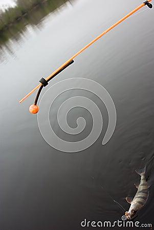 Linha tornada mais pesada (para a parte-pesca)