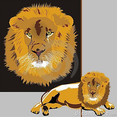 Free Lion Stock Image - 4300831