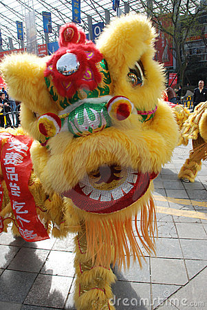 Free Lion Dance Stock Images - 24148974