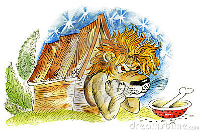 Lion in doghouse