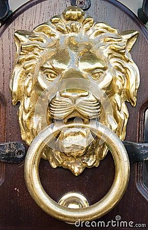 Free Lion Head Royalty Free Stock Image - 2970196