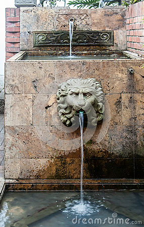Lion Head Hacienda Santa Barbara Bogota Colombia