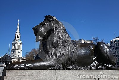 Lion in London s Trafalgar Square