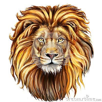 Free Lion Male, Aslan Royalty Free Stock Photo - 70660315