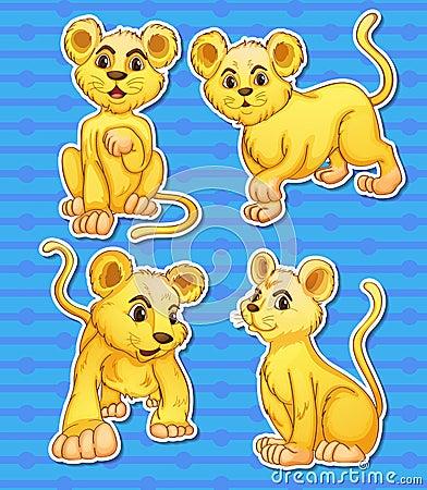Free Lion Set Stock Photo - 44515050