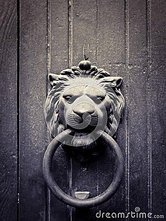 Free Lion-shaped Door Knocker Stock Photos - 21387973