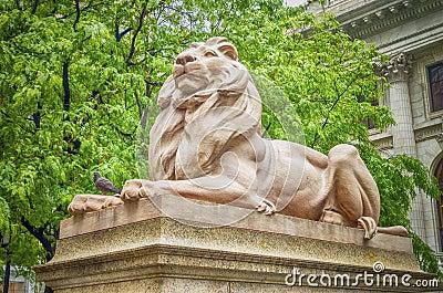 Lion Statue, New York City