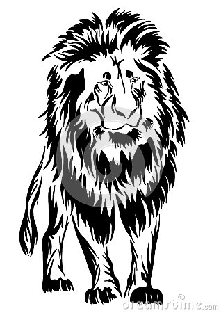Lion. tattoo.