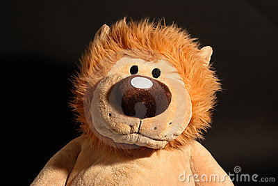 Lion toy portrait.