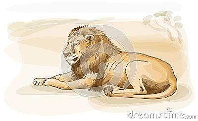Lion. Watercolor style.