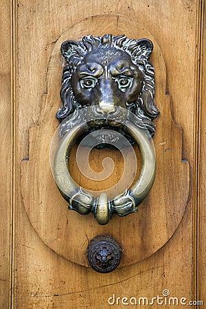 Free Lionhead Door Knocker Stock Photography - 4897602