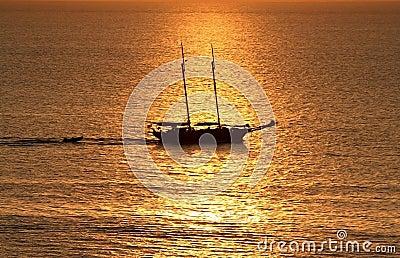 liquid Gold Holiday boat