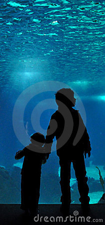 Lisbon Oceanarium Editorial Photo