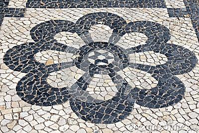 Lisbon Pavement Blossom