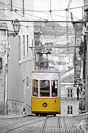 Free Lisbon Tram Royalty Free Stock Photo - 19021755