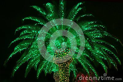 Lit Outdoor Christmas Palm Tree