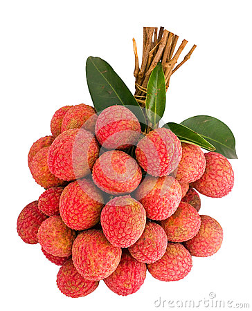 Free Litchi Isolated Royalty Free Stock Photo - 25520265