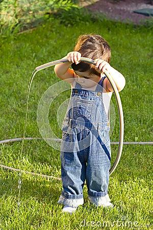Little baby boy gardener