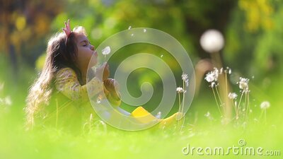 Little beautiful girl play outdoor and blowing dandelion stock footage