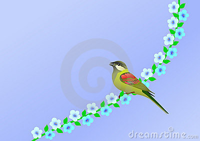 Little bird and flowers
