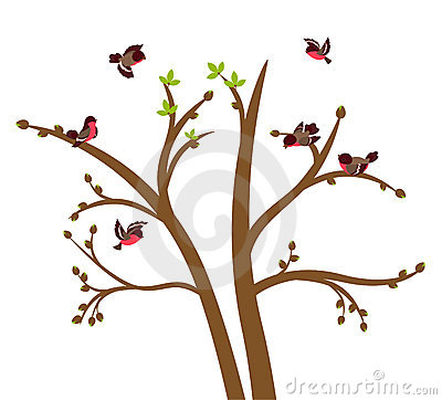 Little birds chirp on spring tree