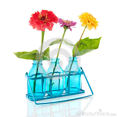 Little bottles with Zinnias