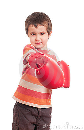 Little Boxer Attack Stock Image - Image: 19197041