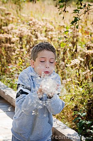 Little boy blowing plant seeds