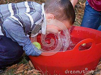 Little Boy Bobbing For Apples