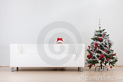 Little boy and Christmas tree