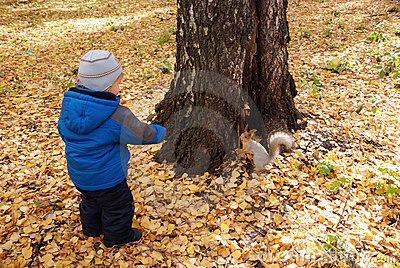 The little boy feeds the squirrel with a nut
