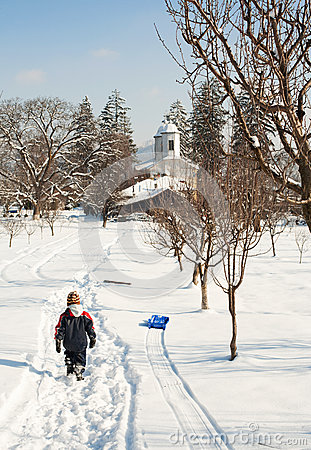 Little boy going home on snow