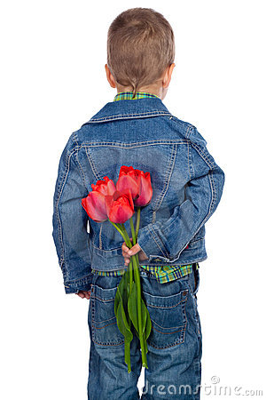 Little boy hiding red tulips