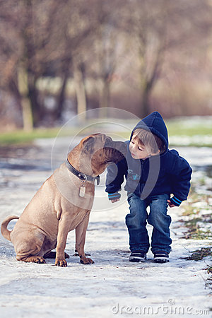 Free Little Boy In The Park With His Dog Friend Royalty Free Stock Photography - 37909117