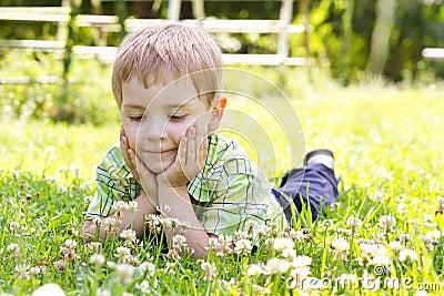 Little boy lying in clover flower field