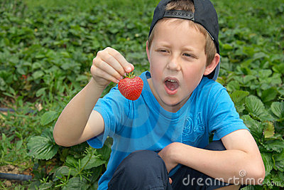 Little boy with open mouth looks at strawberry